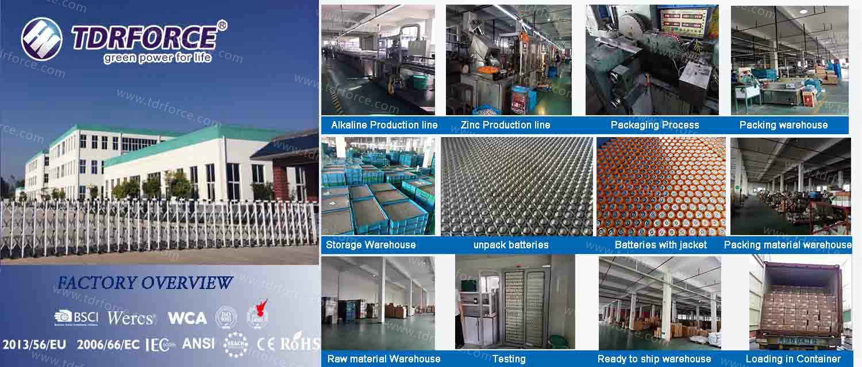 Mercury&Cadmium Free China Factory Digital Alkaline Battery